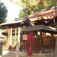 梅 新日吉神社