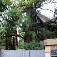 京都近代建築遺産 大丸ヴィラ ヴォーリズ 下村正太郎