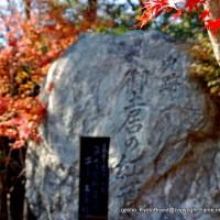 続 秀吉が京都に残したもの 御土居