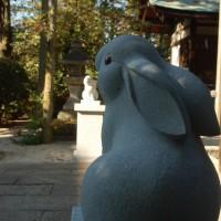 初詣 狛兎 岡崎神社 スサノオノミコト