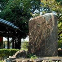 南禅寺の奥山 神明山の紅葉