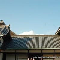 秋季一般公開 京都御所の秋 その2