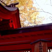初詣 干支 龍 辰  貴船神社 奥宮 高龗神(たかおかみのかみ)」