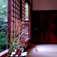 観月茶会 中秋の名月 妙心寺 退蔵院 花園天皇 無相大師 千山和尚 狩野元信