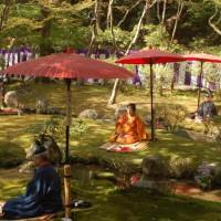 桜見に曲水宴