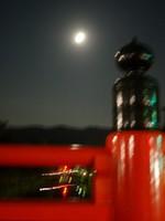 芋名月と月見だんこ