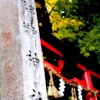 紅葉 岩戸落葉神社