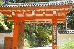 観蓮 花の寺 : 西国観音霊場第10番札所 三室戸寺 山門