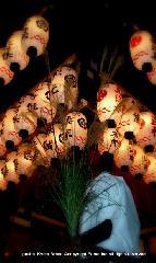 観月祭 : 舞殿のススキが持ち帰れる