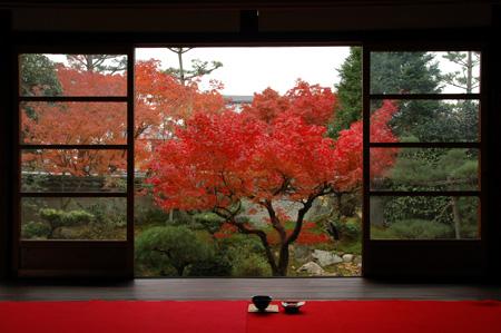 紅葉紀行 陽だまり東福寺山内