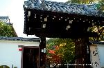 紅葉 紅葉狩 花暦 : 京料理高澤の弁当が・・・季節限定の出店