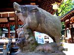 狛犬巡り : 狛亥