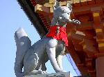 狛犬巡り : 狛狐