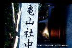 近江屋事件 : 日本最初の商社といわれる「亀山社中」
