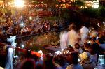 蛍狩り 蛍火の茶会  : 笹の葉ごとホタルは川へ 風流は・・・