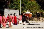 葵祭 路頭の儀 : 到着した近衛使代が二の鳥居を入る