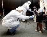 更衣 しつらえ替え : 放射能汚染