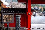 初詣 干支 龍 辰 : 通称「赤門」こと開運門