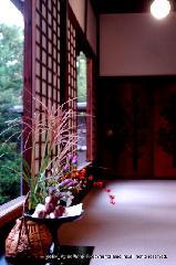 観月茶会 中秋の名月 : 方丈に供えられた月見だんご