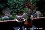 観月茶会 中秋の名月 : お供えに石庭