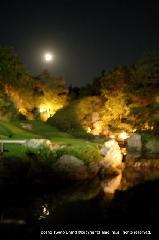 観月茶会 中秋の名月 : 名月の余香苑