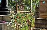 終い天神 : 北野天満宮の縁日(毎月25日)の中でも特に12月25日は、 終い天神と呼ばれ 京都の一年の行事を締めくくる師走の恒例神事として 京阪神はもとより全国からの多数の参拝者で賑わいます。