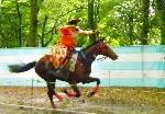 流鏑馬 : 5/3下鴨神社で流鏑馬の神事が執り行われます。  その流鏑馬の矢が放たれる一瞬を捉えたところ。  5/15葵祭路頭の儀の前には・・・ 5/1足汰式に始まり、斎王代禊の儀、賀茂競馬など、神事がメジロ押しで目が離せません。 こちらでお確かめを! http://kyoto-brand.com/cms/aoimatsuri/event_schedule/