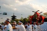 松尾祭 : 松尾の葵祭とも呼ばれる神幸祭が24日執り行われ、5/15の還幸祭まで各氏子域の御旅所にお出ましになっている。大社を出て桂川を船渡御のあと、神輿が練り歩く。大宮東寺道での様子で、この先に伏見稲荷の御旅所がある。ここにも稲荷祭の神輿がお出ましになっている。春祭りのはじまりだ。