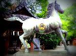 干支神社 : 毎年5月5日の藤森祭で駈馬神事が行なわれます。男の子の成長を願う「菖蒲(節句)の節句」発祥の神社であり、  菖蒲しょうぶは尚武に通じ、尚武は勝負に通じると言われ、勝運を呼ぶ神として信仰を集めています。  室町時代から走り馬が行われ、その後駈馬神事として受け継がれていて、古来、神社と馬とのかかわりは深く、  境内には駈馬神事を象徴する神馬像があり、拝殿には、「左馬」 「馬」の大絵馬があります。