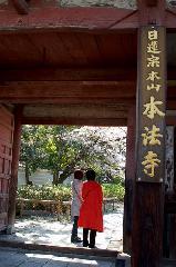 花見 : 色褪せた朱の仁王門を潜る
