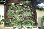 信長忌 本能寺の変 : 秀吉の創建した織田信長の菩提寺「信長公廟所」