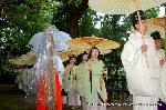 お田植祭  : 神楽女のあとにも神官が列を成す