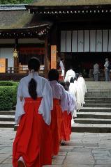 夏越祓 茅の輪くぐり : 本殿へ奉告の儀