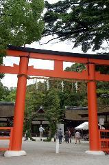 夏越祓 茅の輪くぐり : 午前10時の神事前の茅の輪に橋殿