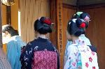おことうさん 師走風景 : 祇園事始めの、いの一番は京舞井上流へのご挨拶である