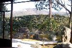 涅槃図 : 枯山水庭園「涅槃の庭」 借景に比叡山、東山如意ケ嶽。