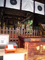 松尾祭 双葉葵 : 本殿拝所と神紋の双葉葵