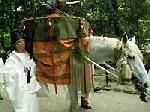 葵祭 御蔭祭 : 錦蓋を背に乗せ神鈴をつけられた神馬