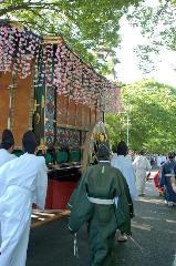 春祭 葵祭 : 新緑のトンネルを行く女房車