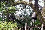 京都近代建築遺産 : シメントリーの二棟が繋がっている