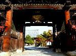 洛陽六阿弥陀めぐり 日本三如来 : 国宝釈迦如来・日本三如来の阿弥陀仏を有する