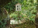 洛陽六阿弥陀めぐり : 山科・日ノ岡峠の車石