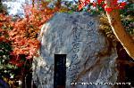 文化遺産 お土居 紅葉 石碑 : 史跡御土居の紅葉