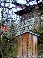 文化遺産 お土居 梅花祭 駒札 : お土居下梅苑