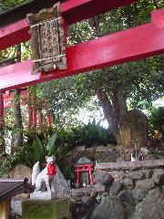 文化遺産 お土居 : 御土居の頂上に建つ大明神