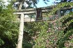 花暦 萩 お彼岸 秋分の日  : 萩の宮