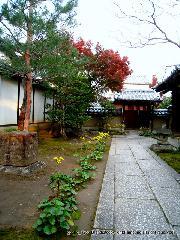 紅葉 秋の特別公開 : 方丈玄関に続く石畳、後方に玄関・前方は二の門