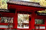 紅葉 : 桜門と拝殿に奥宮